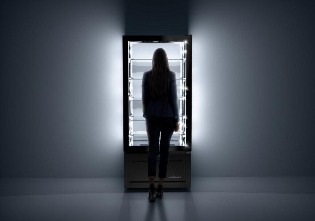 vetrina espositiva refrigerata verticale
